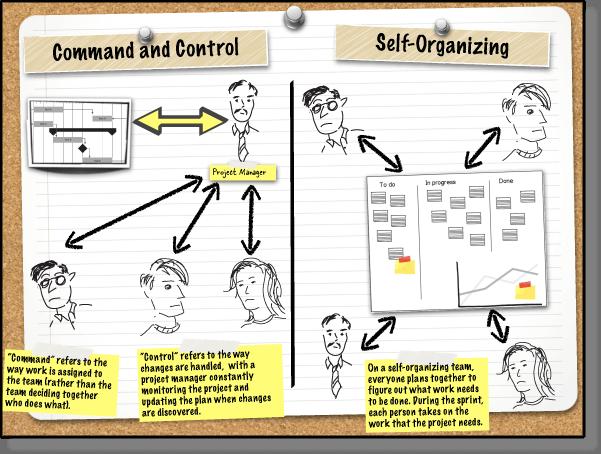 自组织与传统命令控制的比较