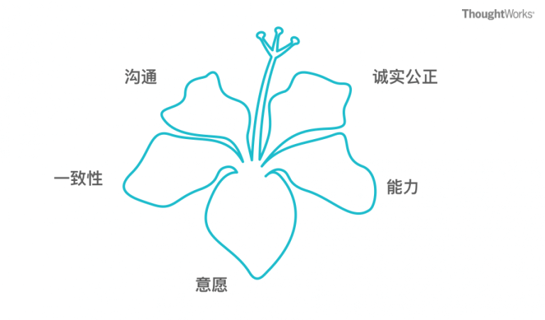 图3: 团队信任之花